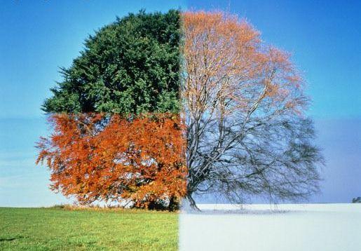seasons_change